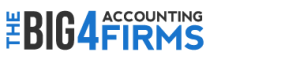 the big 4 accounting firms logo